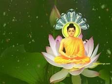 buddha wallpaper gautama buddha wallpaper