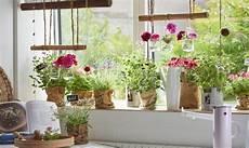 vasi in legno fai da te vasi per piante fai da te con come costruire un vaso in
