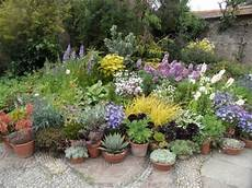 Great Dixter Perennials In Pots Back In The Uk