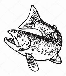 fish outline trout fish outline stock vector 169 kvasay