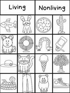 15 best images of is it living worksheet kindergarten living things worksheet first grade