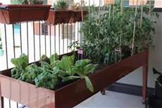 l orto in terrazza come fare un orto sul terrazzo coltivare orto in terrazza