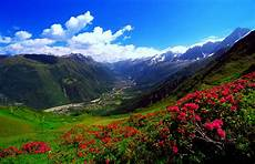 flower valley hd wallpaper 1 carpathian mountains hd wallpapers background images
