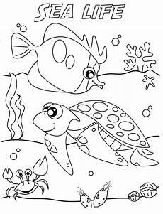 malvorlagen fur kinder ausmalbilder unterwasserwelt