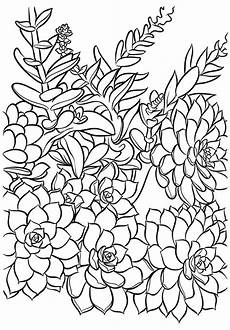 coloring pages free printable 17533 succulent coloring card free printable butterfly coloring page coloring pages free