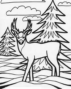 free coloring pages of animals printable 17399 for education new animal deer coloring pages