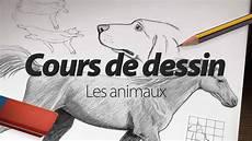 cours de dessin apprendre 224 dessiner les animaux par