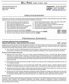 9 executive summary exles word pdf free premium