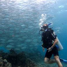 padi open water diver course kota kinabalu