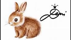 kaninchen h 228 schen zeichnen lernen in 3 farben how to