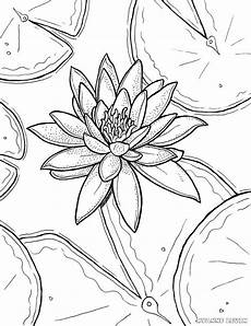 free printable water coloring page ryanne