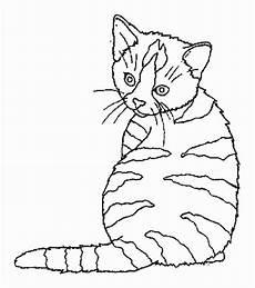 Ausmalbilder Katzen Kostenlos Katze Malvorlagen Kostenlos Zum Ausdrucken Ausmalbilder