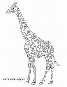 malvorlage giraffe tiere kostenlose ausmalbilder