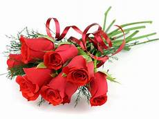 flower ki wallpaper cool daily pics only roses high quality wallpapers