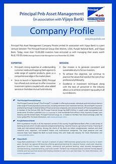 business profile exles buyerpricer com places to visit pinterest company profile