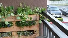 Vertikaler Garten Kaufen - turn a wood pallet into a vertical garden lifehacker