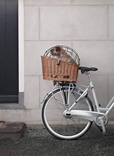 Beg Basil Basket And Frame Vintage Bicycles