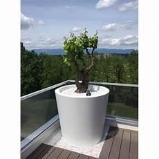 tr 232 s grand pot de fleurs conique large hauteur 100 cm