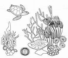 Malvorlagen Meerestiere Um Malvorlagen Meerestiere Ausmalbilder Fur Euch