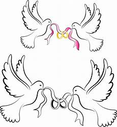 Wedding Dove Clipart white wedding doves with rings free vector in adobe