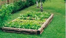 fare l orto in giardino come utilizzare la pollina per la concimazione dell orto