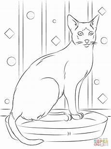 Ausmalbilder Siamkatze Sitting Siamese Cat Coloring Page Supercoloring