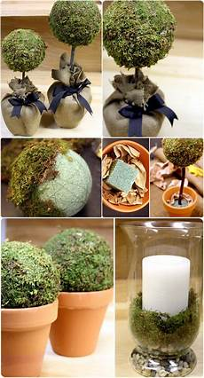 topiaries moss topiaries decorations tutorial for