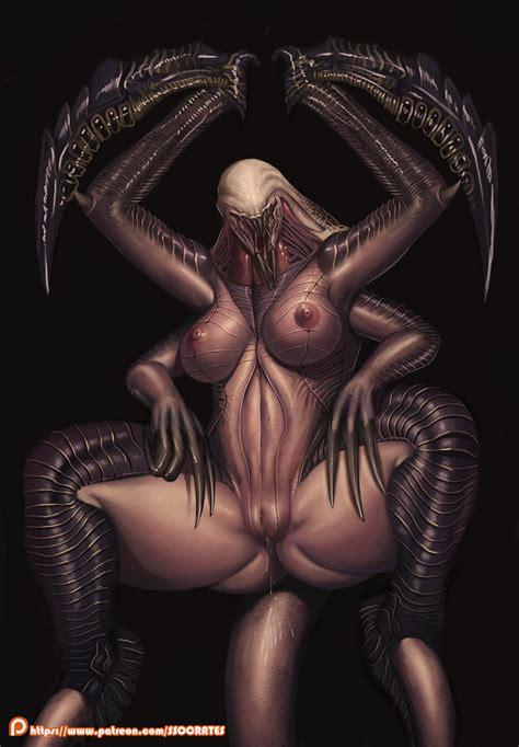 Shiveryah Sorceress
