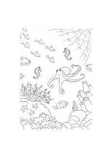 Malvorlagen Unterwasserwelt Um Malvorlagen Unterwasserwelt Um Tiffanylovesbooks