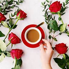 fiori coffee win coffee roses for your s