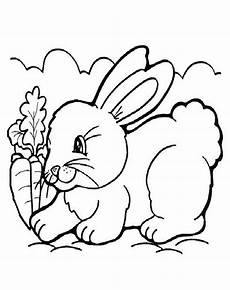 Ausmalbilder Hase Ausmalbilder Hase 06 Ausmalbilder Tiere