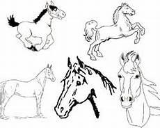 kostenlose pferde malvorlagen zum ausdrucken