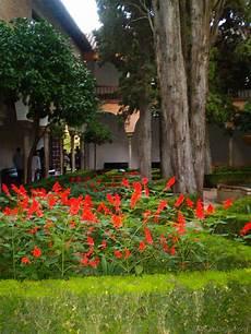 jardin de flores rojas