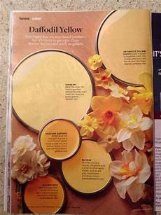 better homes and gardens daffodil yellow paint sles
