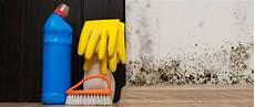 Mietminderung Bei Schimmel Schimmelbefall In Der Wohnung