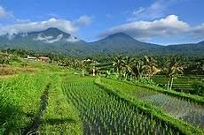 Jatiluwih Penebel Tabanan Bahasa Indonesia