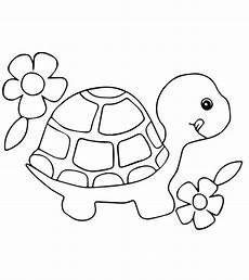 small animals coloring pages 17154 top 20 free printable turtle coloring pages