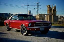 Cars & Trucks  Ford Mustang Web Museum