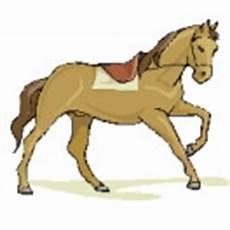 gratis malvorlagen pferde