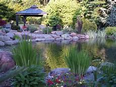iris ramblin through dave s garden