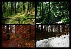 Ausmalbilder Herbst Und Winter Fruehling Sommer Herbst Winter By Sahk99 On Deviantart