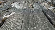 morsches holz verfestigen granitsteine schneiden