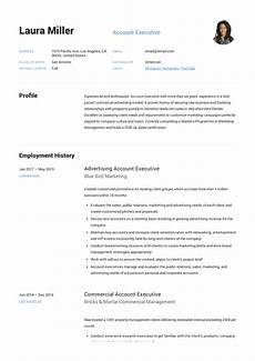account executive resume writing guide 12 templates
