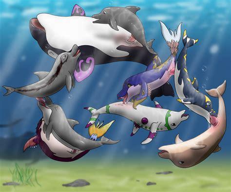 Dolphin Sex Porn