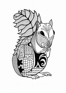 coloring pages of animals 17199 intricate squirrel coloring page favecrafts