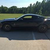 Mustang Shelby For Sale  Used Ford Mustangs