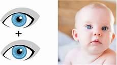 augenfarbe beim baby vorhersagen kann sie berechnen