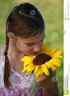 bambino sente l odore di ragazza sente l odore di un girasole fotografia stock