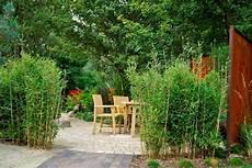 Bambushecken Sorten Und Pflanzabstand Bambus Und
