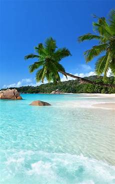 tropical beach live wallpaper android apps on google play